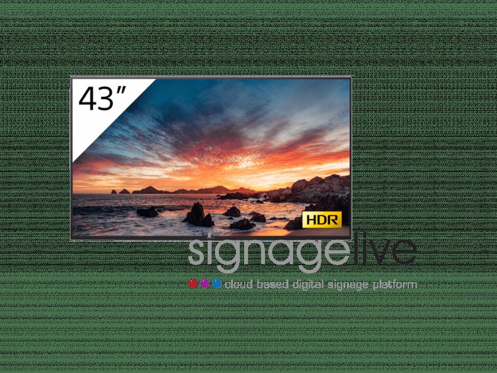 Sony digital signage